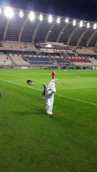 Le Stade de la Licorne à trente minutes du coup d'envoi