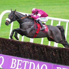 No More Heroes wins at Punchestown