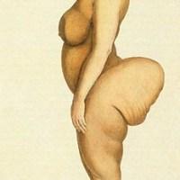 Vénus Hottentote, bête de foire et prostituée (pour son cul)