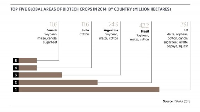 Top 5 areas of biotech crops in 2014