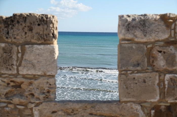 Cipru III - ferma vedetelor