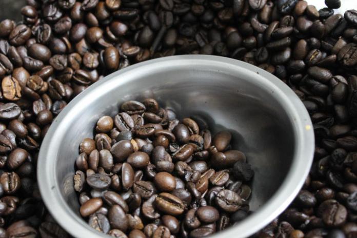 indikasi geografis kopi robusta lampung