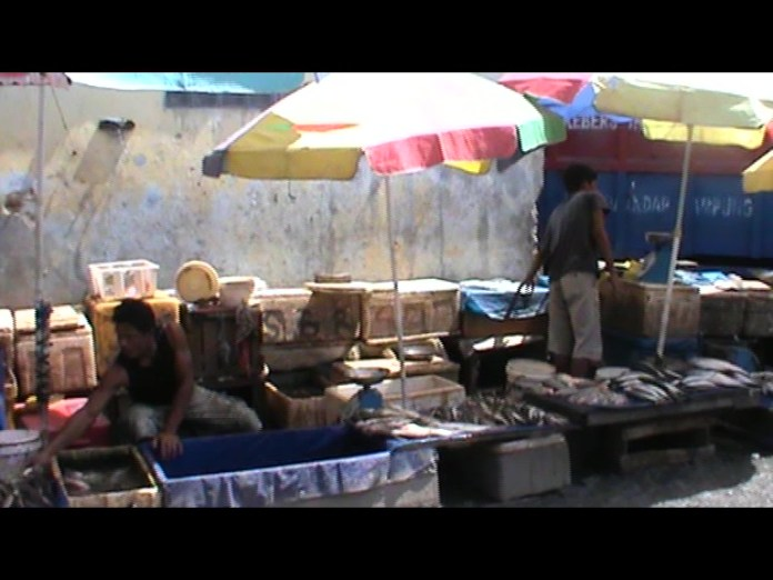 Pedagang Belut Raup Untung Berlipat