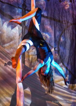 Aeraflux Aurora Aerial Silks