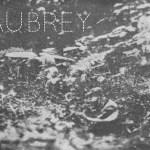 Aubrey! – A conversation with Aubrey Heichemer by Shephard/Van Alebeek
