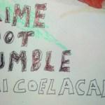 Dai Coelacanth -Crime Boot Rumble