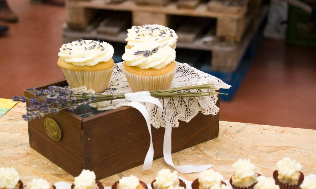 cupcake-cup1