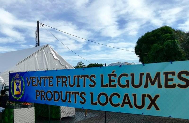local farms fruits legume (1)