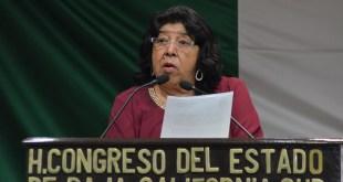 """""""Si es necesario apretar la Ley -de Alcoholes- hay que apretarla"""": Dip. Araceli Niño López"""