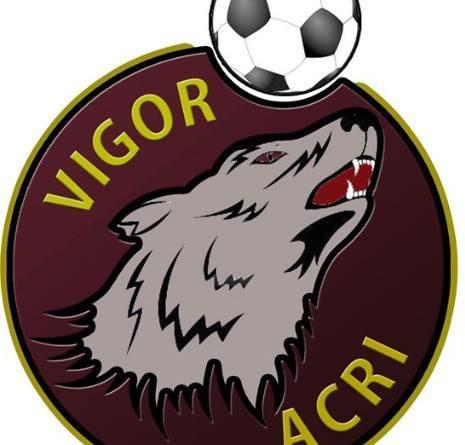VIGOR ACRI