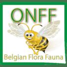 fff belgique