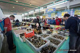 mercato radioamatore 111 314x210 Il grande Market per fare shopping tecnologico in fiera