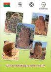 Le sites de métallurgie ancienne du fer sont désormais Patrimoine mondial de l'UNESCO