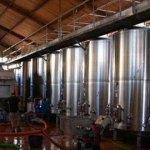 Crecen las exportaciones de vinos a granel