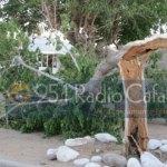 El viento quebró un árbol en el FONAVI