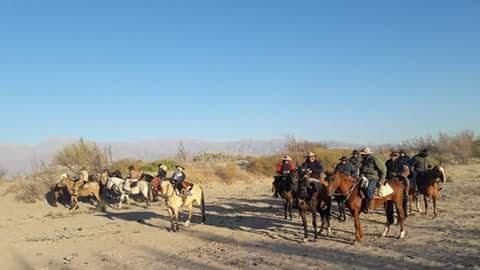 Los peregrinos a caballo de Cafayate durante la cabalgata promesante