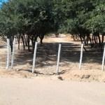 La familia Peñalva volvería a ofrecer un canje por las 32 hectáreas