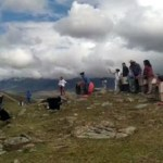 Liberaron cinco cóndores rescatados en Tafí del Valle