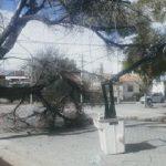 Tremendas imágenes de los daños causados por el viento zonda