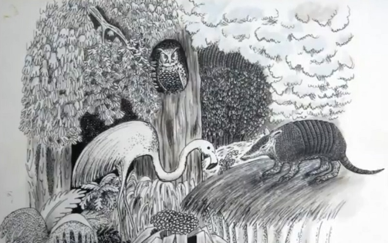 Cuentos de la Selva en la biblioteca de AEBU