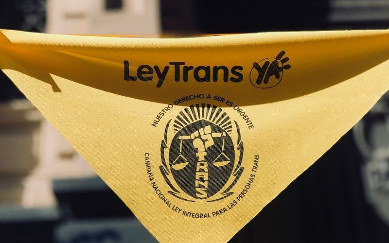"""Ley Trans: """"Estamos dándonos cuenta de que es algo histórico"""""""