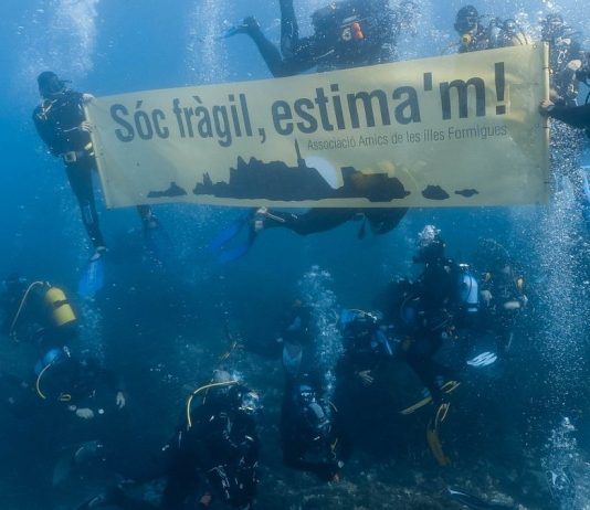 Amics de les Illes formigues manifestant-se