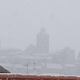 nevada a Pals