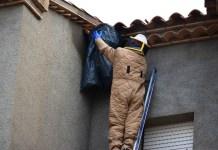 Retirada d'un niu de vespes a Sant Feliu