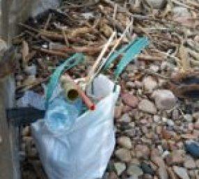 Bossa d'escombraries durant la neteja a la Platja d'Aiguablava pels infants de Begur | Imatge de l'Ajuntament