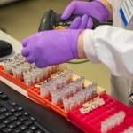 Fent proves per trobar la vacuna del coronavirus en un laboratori | Imatge de HM Treasury lliure de drets d'autor