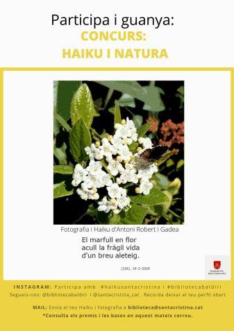 haiku cartell02