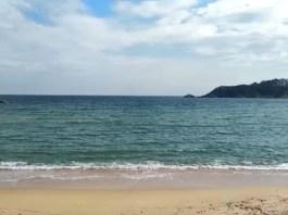 Platja de Sant Pol on s'han vist dos taurons a la platja de Sant Feliu de Guíxols | Imatge del vídeo