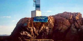 Soc la posidonia, cuida'm | La campanya dels Amics de les Illes Formigues