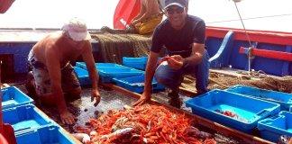 Pescadors de gamba | Imatge d'arxiu