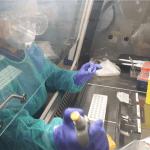 Hospital Sant Joan de Déu fent l'anàlisi una prova PCR de COVID-19 per detectar el coronavirus | Imatge cedida a l'ACN