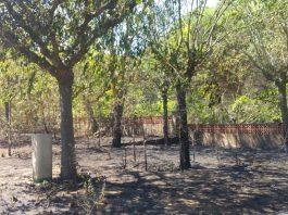 Incendi a l'antic càmping La Coma de Palamós | Imatge de Ràdio Palamós