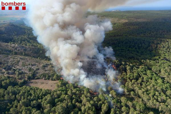 privat:-incendi-forestal-a-les-dunes