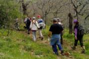 El programa municipal de senderismo se adentra en los Molinos Harineros de Cortegana