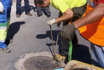 El Ayuntamiento inicia la primera fase de la campaña contra las cucarachas de la red de alcantarillado