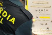 La Guardia Civil desarticula una organización criminal especializada en el robo de urbanizaciones y casas de campo de varias localidades de Huelva