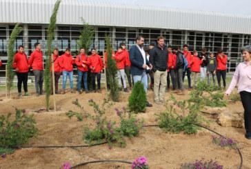 Un 'Jardín Violeta' recuerda desde hoy a las víctimas contra la violencia de género en Cartaya