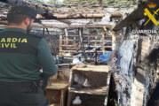 Cartaya | La Guardia Civil recupera 35 palomas que fueron sustraídas de un palomar en la localidad