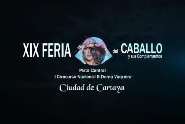 Cartaya Tv | Feria del Caballo 2020: I Concurso Nacional B de Doma Vaquera «Ciudad de Cartaya»