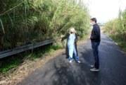 El Ayuntamiento de Cartaya invierte 110.000 euros en el mantenimiento y mejora de las cunetas de los caminos rurales