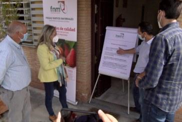 Cartaya Tv | El Ayuntamiento apuesta por la innovación de las empresas agrícolas locales
