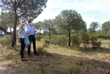 El Ayuntamiento actualiza el Plan Local de Emergencias por Incendios Forestales