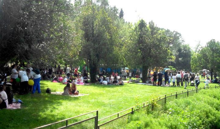 """Cassino – Il 25 aprile con un'affollata maratona di primavera, ma domenica c'è il """"posticipo"""""""