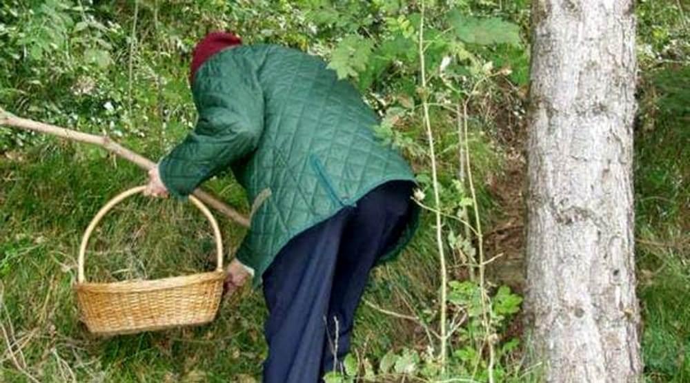 Sud Pontino – Trovato senza vita tra i boschi a Spigno Saturnia un 64enne del luogo. Era uscito in cerca di funghi
