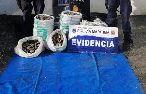 Ancud: policía marítima realiza decomiso de productos del mar.
