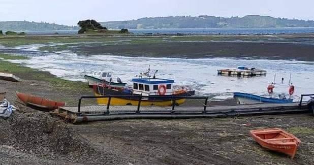 Curaco de Vélez: mujeres se adjudican proyectos en el Fondo de Fomento de la Pesca Artesanal.
